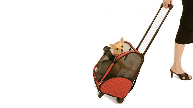 Как выбрать клетку для собаки  для дома в самолет