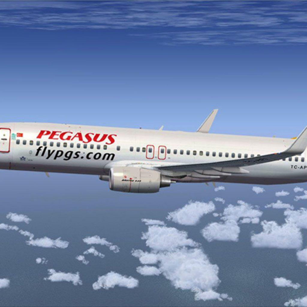 Билеты на самолет рейс москва-израиль акция авиабилеты владивосток москва