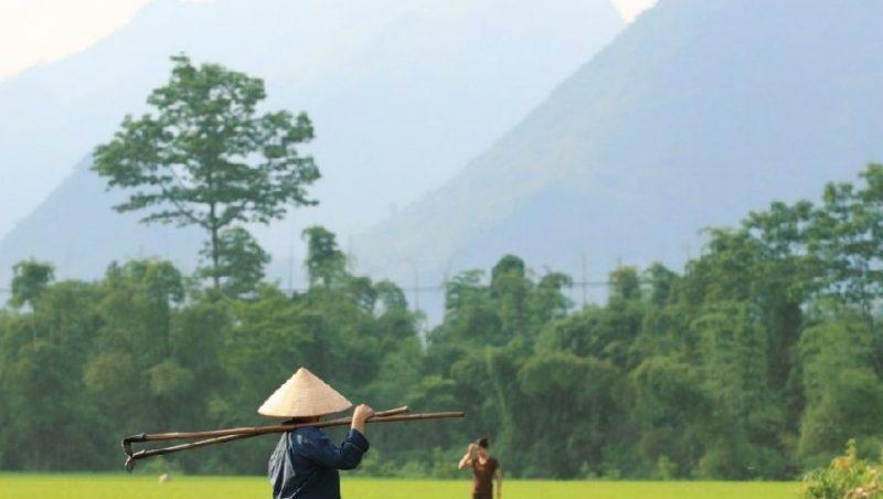 сезон когда лучше лететь отдыхать во Вьетнам