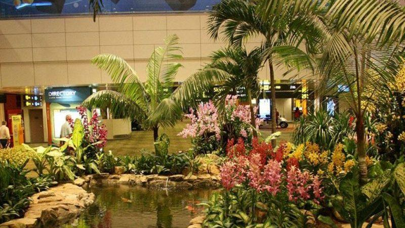 10 самых красивых аэропортов мира