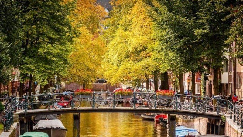 как добраться из аэропорта Схипхол до центра Амстердама