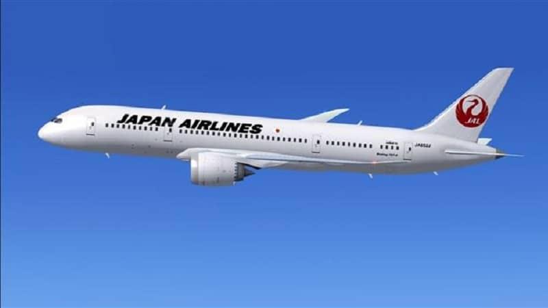 """Национальная авиакомпания Японии """"Japan airlines"""""""
