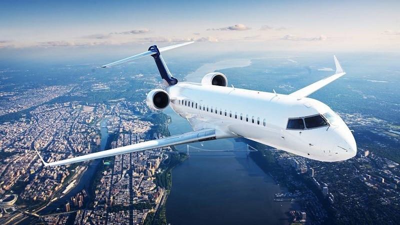Какие типы авиакомпаний бывают и какие обязанности у их представителей